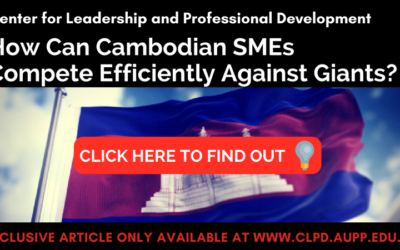 How Can Cambodian SMEs Compete Efficiently Against Giants – CLPD